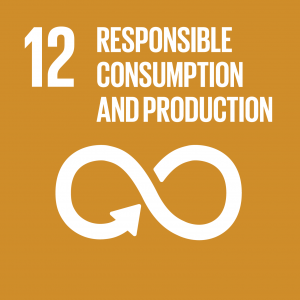 Sustainable Development Goal 12, Responsible Consumption and Production: Ensure sustainable consumption and production patterns