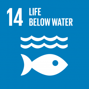 Sustainable Development Goal 14, Life Below Water: Conserve and sustainably use the oceans, seas and marine resources for sustainable development