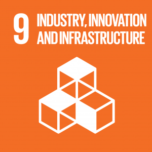 Sustainable Development Goal 9, Industry, Innovation and Infrastructure: Build resilient infrastructure, promote inclusive and sustainable industrialization and foster innovation