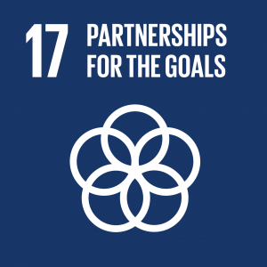 Sustainable Development Goal 17, Partnerships for the Goals: Strengthen the means of implementation and revitalize the global partnership for sustainable development